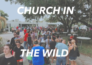 CHURCH IN THE WILD